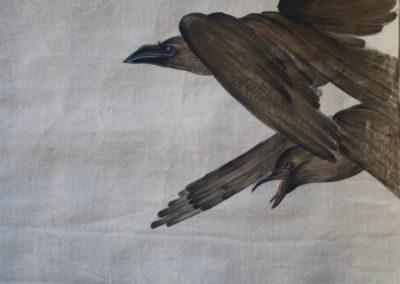 corvi part.