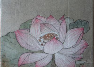 fiore diloto
