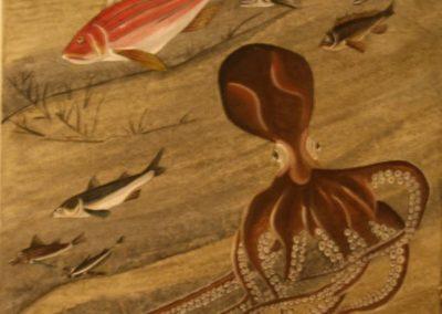 pesci jakuchu 2